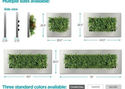 Easily place plants on walls with planted picture frames
