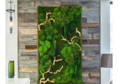 Moss Walls Make Dramatic Centerpieces