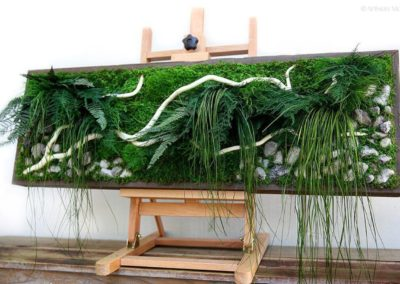 Bring walls to life with preserved moss and grasses