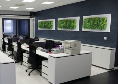 A great alternative to green walls, planted pictures bring nature to your office