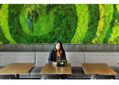 Custom-designed preserved moss walls brig nature to indoor spaces